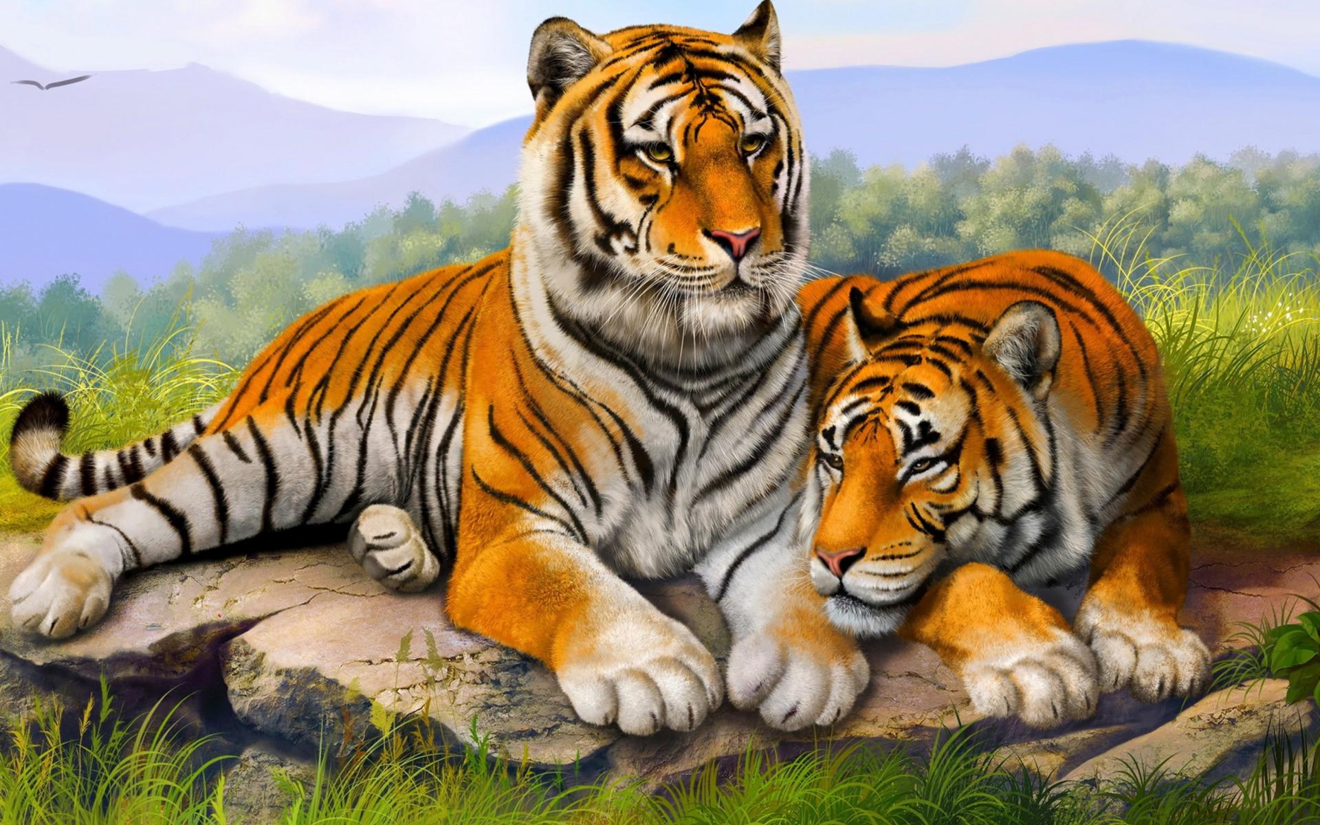 Tiger family drawing - photo#25