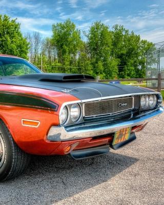 Dodge Challenger 1970 - Obrázkek zdarma pro 320x480