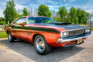 Dodge Challenger 1970 - Obrázkek zdarma pro 1024x600