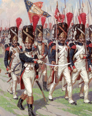 Napoleonic Wars Old Guard - Obrázkek zdarma pro 480x640