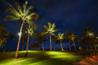 Oahu Hawaii Landscape Picture for Android, iPhone and iPad