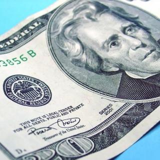 Twenty Dolars - Obrázkek zdarma pro 208x208