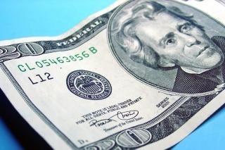 Twenty Dolars - Obrázkek zdarma pro Google Nexus 7