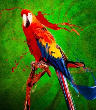 Big Parrot In Zoo - Obrázkek zdarma pro Nokia Asha 309