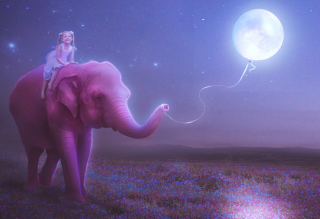 Child And Elephant Picture for Android, iPhone and iPad