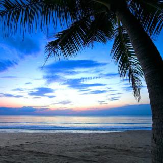 Caribbean Beach - Obrázkek zdarma pro iPad 2