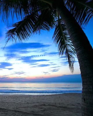 Caribbean Beach - Obrázkek zdarma pro Nokia C6