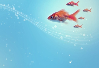 Goldfish - Obrázkek zdarma pro Samsung Galaxy Ace 4