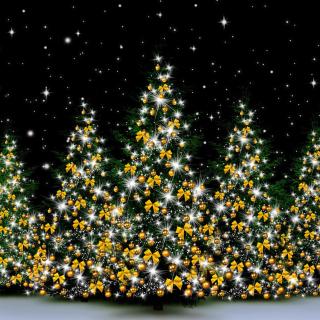 Christmas Trees in Light - Obrázkek zdarma pro iPad 2