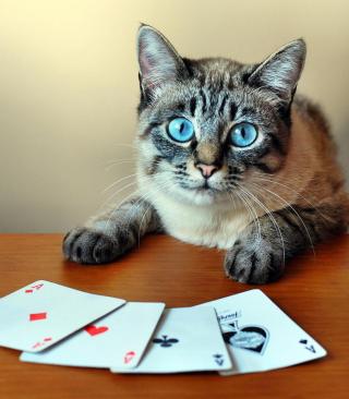 Cat The Winner - Obrázkek zdarma pro 128x160