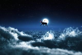 Santa's Reindeer - Obrázkek zdarma pro 480x360