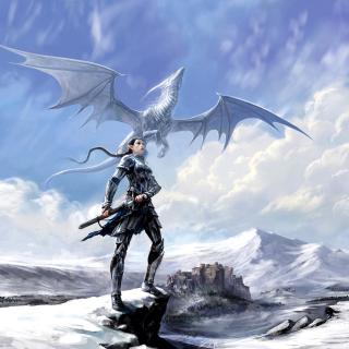 Arcane Elven Warrior in Armor - Obrázkek zdarma pro iPad 2