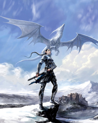 Arcane Elven Warrior in Armor - Obrázkek zdarma pro Nokia Lumia 710