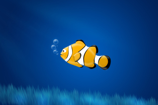 Free Little Yellow Fish Picture for Android, iPhone and iPad