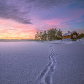 Footprints on snow - Obrázkek zdarma pro 128x128