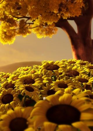 Sunflower World - Obrázkek zdarma pro Nokia X2-02