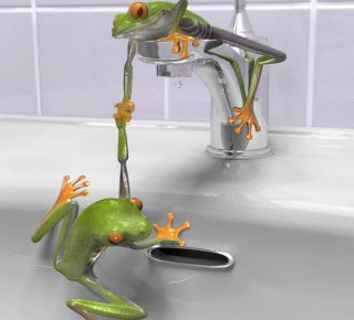 Froggy - Obrázkek zdarma pro 1024x1024