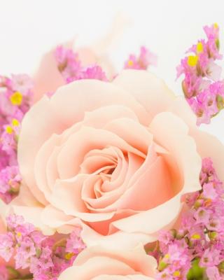 Pink rose bud - Obrázkek zdarma pro Nokia Asha 309