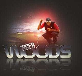 Tiger Woods - Obrázkek zdarma pro 208x208