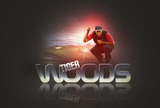 Tiger Woods - Obrázkek zdarma pro Motorola DROID 3