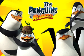 The Penguins of Madagascar - Obrázkek zdarma pro Widescreen Desktop PC 1280x800