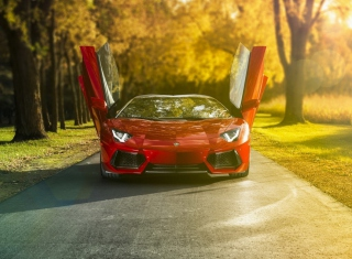 Lamborghini Aventador Roadster Background for Android, iPhone and iPad