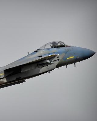 McDonnell Douglas F 15 Eagle - Obrázkek zdarma pro Nokia Asha 306