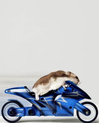 Mouse On Bike - Obrázkek zdarma pro Nokia X3