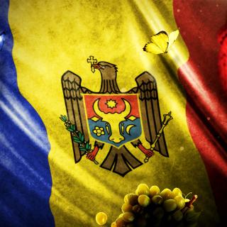 Moldova Flag - Obrázkek zdarma pro iPad mini 2