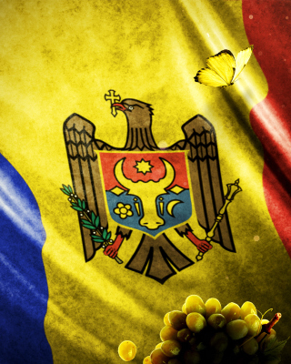 Moldova Flag - Obrázkek zdarma pro 640x960