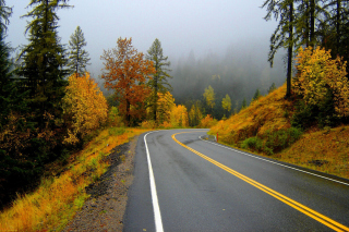 Autumn Sodden Road Wallpaper for Android, iPhone and iPad
