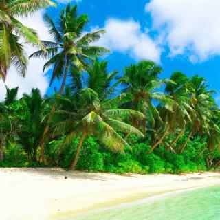 Tropical Landscape and Lagoon HD - Obrázkek zdarma pro iPad mini