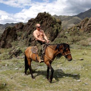 Vladimir Putin President - Obrázkek zdarma pro 320x320