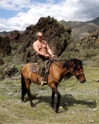 Vladimir Putin President - Obrázkek zdarma pro 128x160