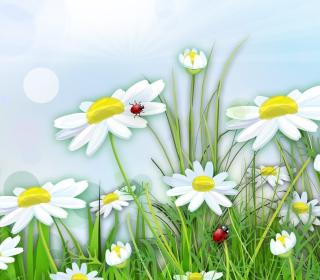 Chamomile And Ladybug - Obrázkek zdarma pro iPad