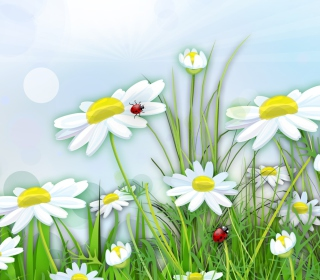 Chamomile And Ladybug - Obrázkek zdarma pro iPad mini