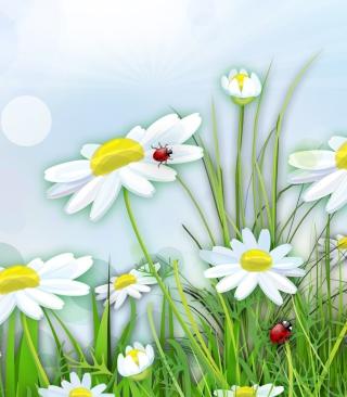 Chamomile And Ladybug - Obrázkek zdarma pro 240x432