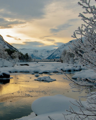 Winter Outdoor Image - Obrázkek zdarma pro 132x176