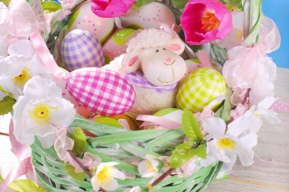 Easter Sheep Background for Android, iPhone and iPad