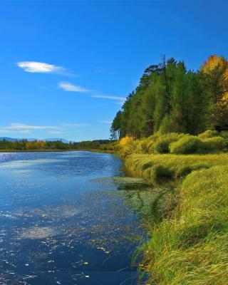 Scenic Lake Oregon HD - Fondos de pantalla gratis para Huawei G7300