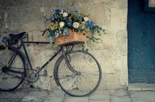 Flower Bicycle Background for Android, iPhone and iPad