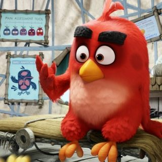 Angry Birds Red - Obrázkek zdarma pro iPad 2