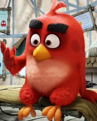 Angry Birds Red - Obrázkek zdarma pro 640x960