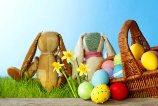 Easter Eggs And Bunny Picture for Android, iPhone and iPad