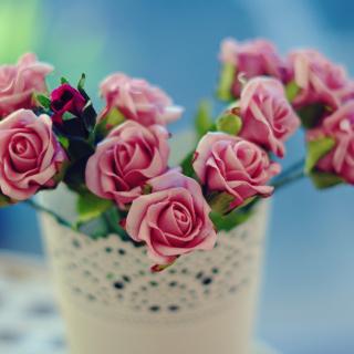 Roses in bowl - Obrázkek zdarma pro 208x208