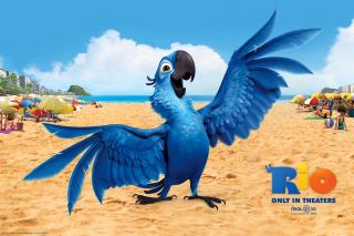 Rio, Blu Parrot - Obrázkek zdarma pro 1366x768