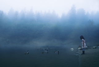 Child Feeding Ducks In Misty Morning - Obrázkek zdarma pro 1600x900