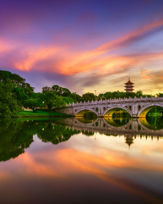 Chinese Garden Singapore - Obrázkek zdarma pro 240x400