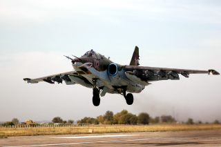 Sukhoi Su 25 Frogfoot Ground Attack Aircraft - Obrázkek zdarma pro LG P500 Optimus One