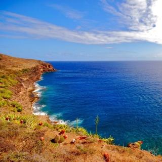 Oceans Cape - Obrázkek zdarma pro iPad